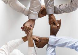 Lær at samarbejde med Sharepoint kurser